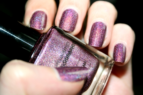 Holo violet 1